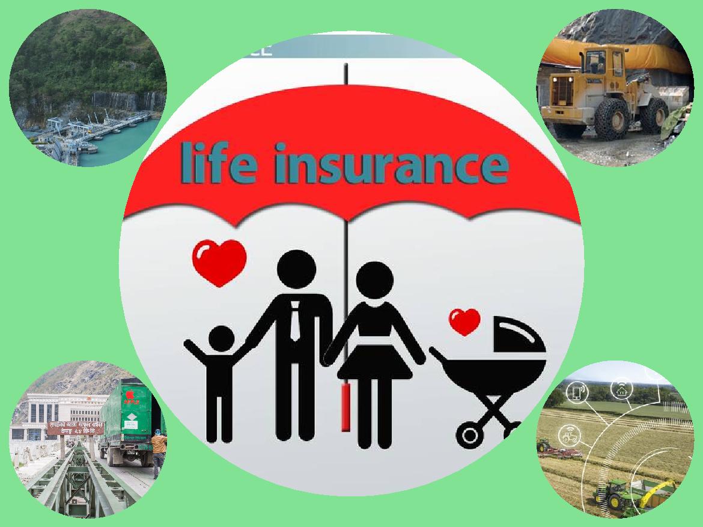 जीवन बीमा कम्पनीहरुलाई पुर्वाधार क्षेत्रमा अनिवार्य लगानी गर्न बीमा समितिको निर्देशन
